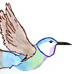 hummingbird_1_vol
